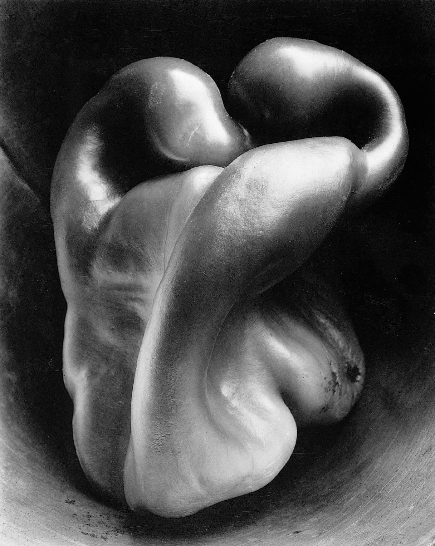 Pepper Edward Weston